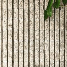 Site Visit . . . . #shubindonaldson #sitevisit #burbank #texture #vertical #concrete #facade #leaves #architecture #design